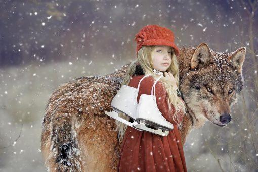 Czerwone Kapturki, wilki i królicza łapka